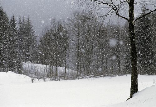 home_sweden_snow_winter