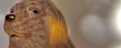 Virginia Woolf, Flush. Una biografia. A cura di Chiara Valerio; nottetempo, Roma 2012. progetto grafico di Dario e Fabio Zannier. copertina (part.), 6