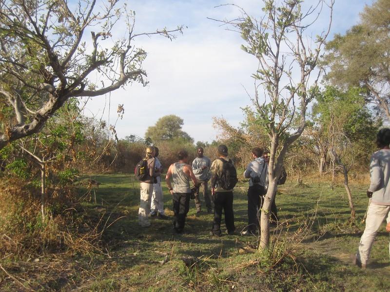 Okavango Delta Botswana Hike Africa