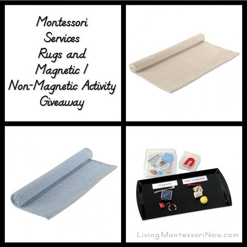 Montessori Services Rugs and Magnetic/Non-Magnetic Activity Giveaway