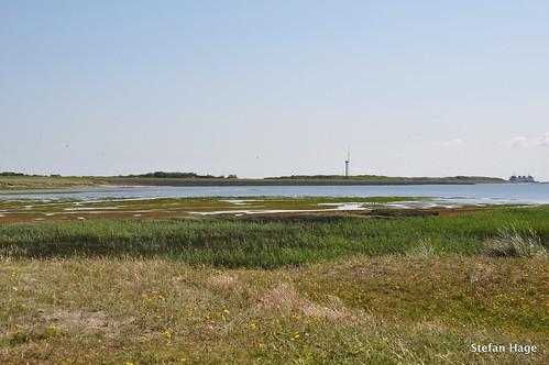 Mokbaai Texel met uitzicht op veerhaven