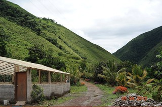 7644794640 dae9e55bf3 n Ecuador Coffee Farm for Sale