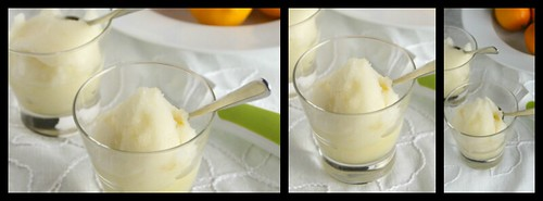 Lemon-Lime Sorbet Collage 2