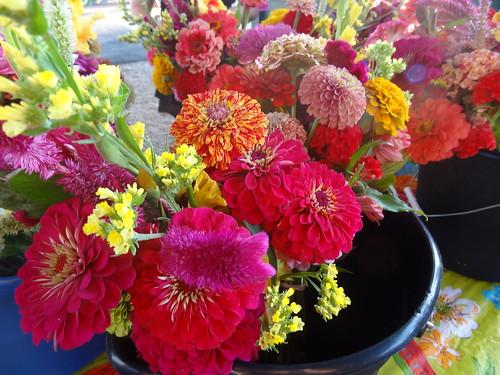 Petersburg Farmers Market July 28, 2012 (7)