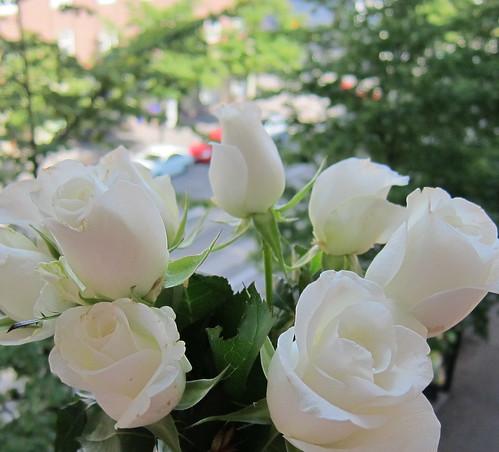 Valkoiset ruusut by Anna Amnell