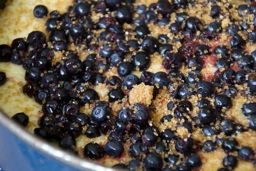 Blueberry coconut cake / Kookoshelbe-mustikakook
