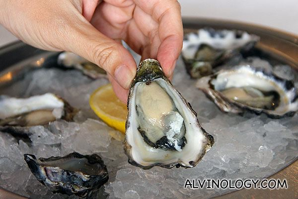 OSTRICHE (AUD$4.50) SYDNEY ROCK OYSTER NATURAL SERVED ON ICE WITH LEMON