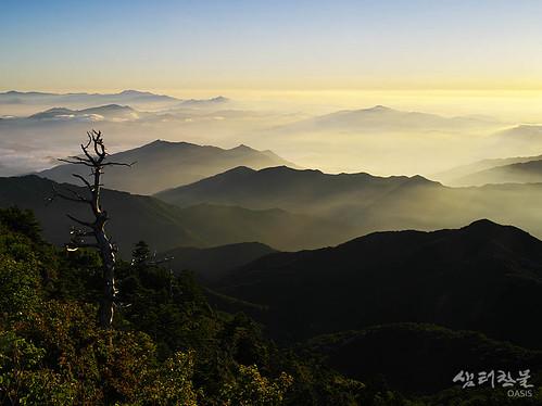 mountain sunrise landscape ridge jirisannationalpark 645d mtjiri oasisframe