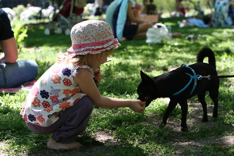 Small Girl With Dog - Vienna, Austria