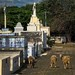 Nicaragua_19113