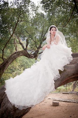 [フリー画像素材] 人物, 女性 - アジア, 行事・イベント, 結婚式, ウエディングドレス, 人物 - 樹木 ID:201211131800