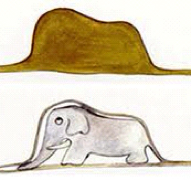 Elephant in snake as envisioned by Saint Exupery