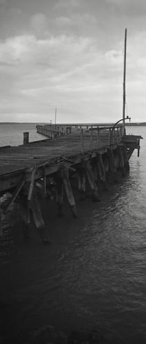 sea newzealand blackandwhite bw film matt landscape blackwhite holga lomo lomography harbour matthew lofi nz otago epson ilford oamaru quintin 120mm lowfi rollfilm bwf v700 mccutcheon lc29 northotago lomonz 120pan