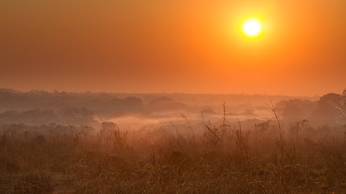 africa sun nature weather fog clouds sunrise day malawi lilongwe ef70200mmf28lisusm canoneos7d