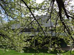 Villa Savoye (Le Corbusier) - Poissy {april 2014}