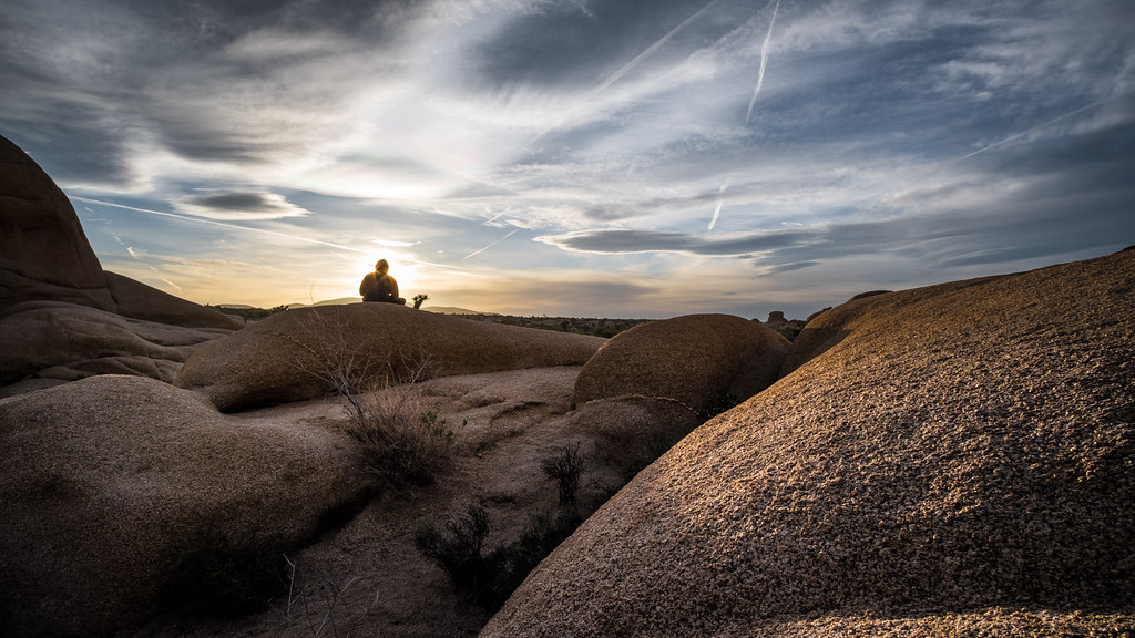 Sunset girl, Joshua tree national park, United States picture