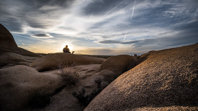 Sunset girl - Joshua tree national park, United States - Color street photography
