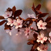 Fleurs de Prunus 2/4