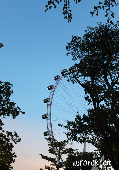 Sunset near the Singapore Flyer
