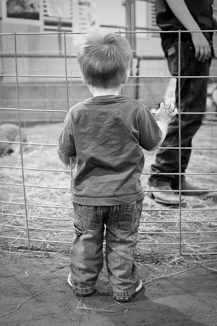farmfriends2012_25