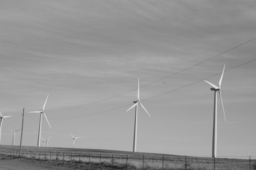 Windfarm 7