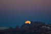 Eclipse Moon Set Under Belt of Venus by Jeffrey Sullivan