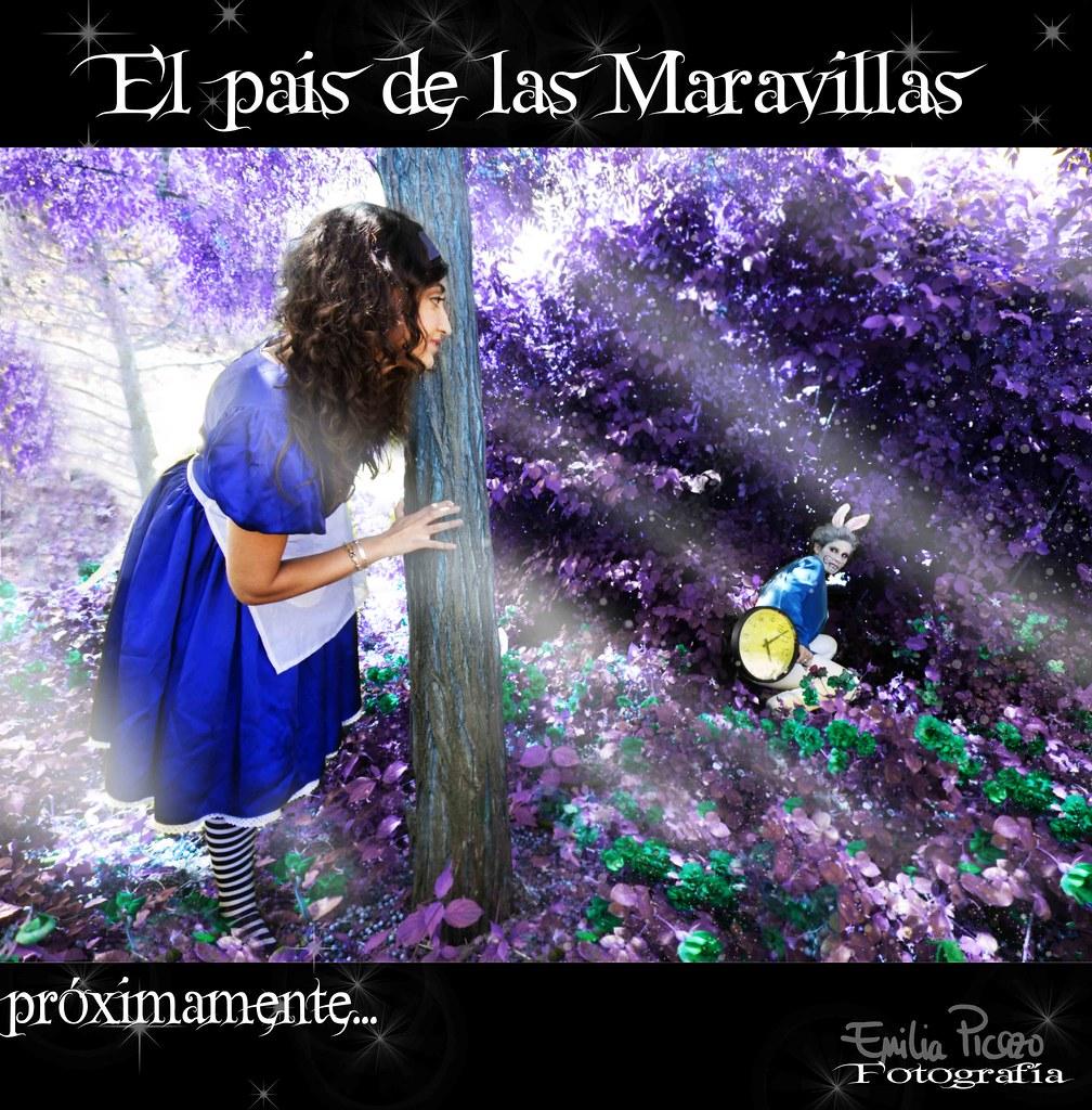 PAIS DE LAS MARAVILLAS