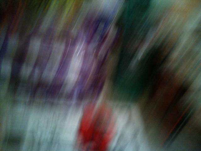 PIC_0446