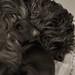 Lulu  and Her Puppie - Lulú y su cachorro by Bluebelier - Loves Juliet