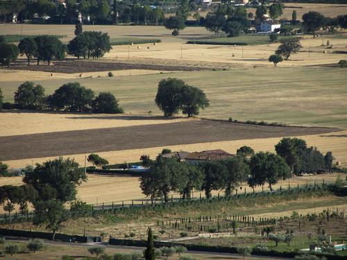 landscape from my window