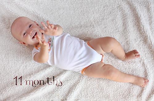 11-months