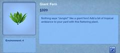 Giant Fern