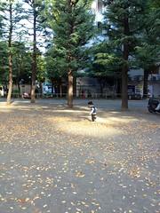 朝散歩 - 恵比寿公園 (2012/11/4)