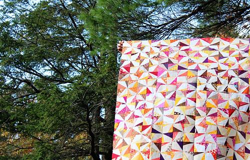 Wonky Pinwheel Quilt Top