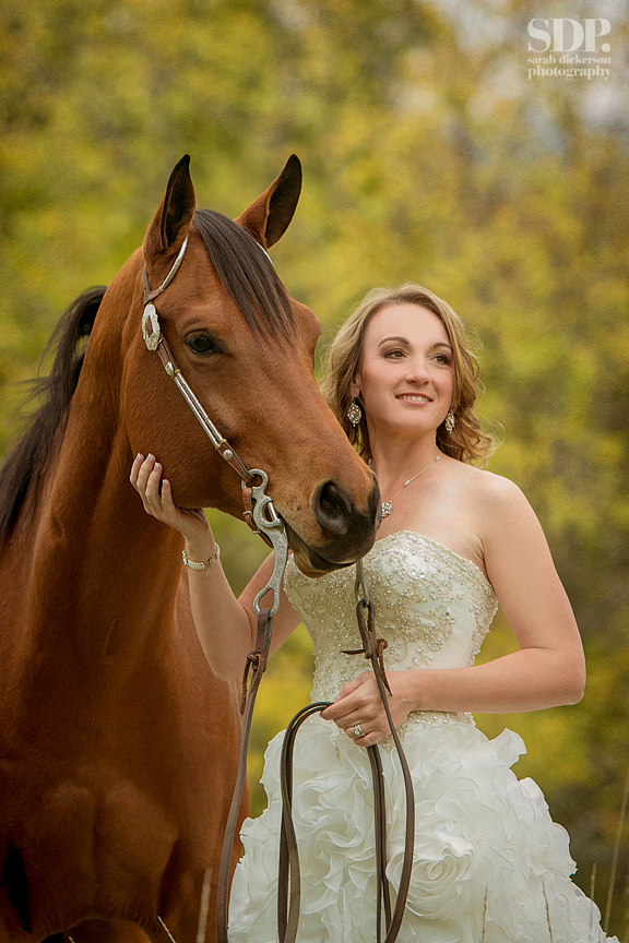Kansas equine bridal session