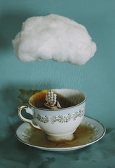 a storm in a teacup (no.2)