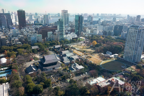View from east side of Tokyo Tower