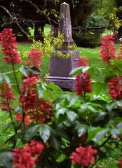 "Cincinnati – Spring Grove Cemetery & Arboretum ""Heuchera Lipstick & Obelisk"""