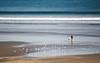 Seven Mile Beach, Gerroa NSW by PhilliB123