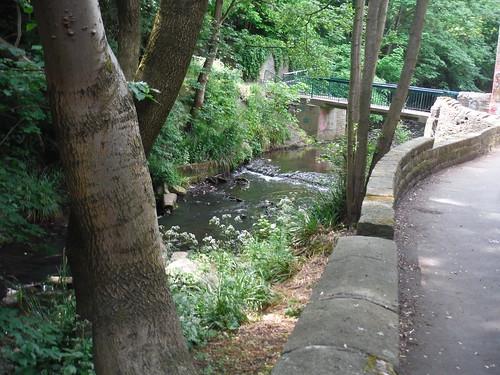Porter Brook, off Frog Lane