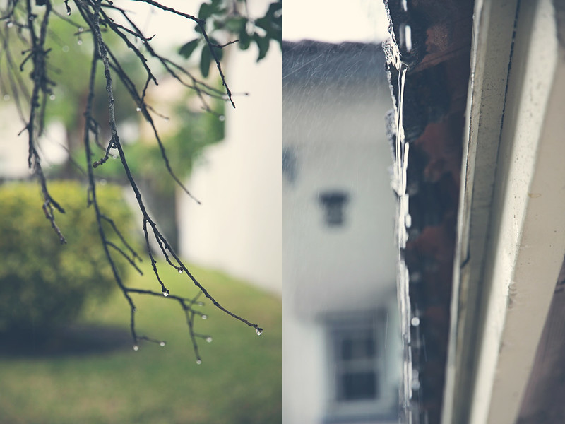 rainy afternoon diptych