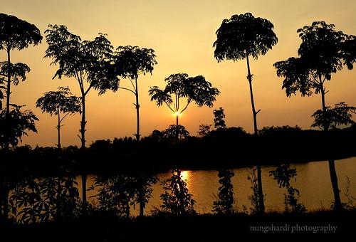sunset sun silhouette shining beautifulearth kotabaruparahyangan