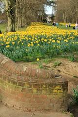 Nowton Park 25-03-2012