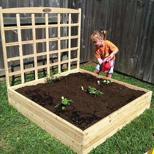 99:365 Watering her new garden.