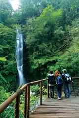 觀瀑台。(圖片來源:羅東林管處)