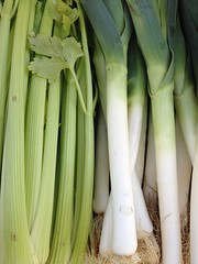 plant(0.0), vegetable(1.0), welsh onion(1.0), produce(1.0), food(1.0), scallion(1.0), plant stem(1.0), leek(1.0),