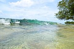Barbados-2MY_2878