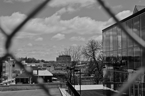 (Day 55) Looking at the skyline, behind the fence. by Aidan M.D. Ware