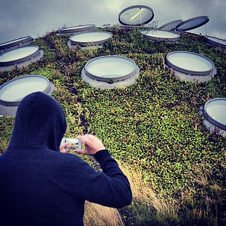 Hoodie, Cell Cam, Living Roof