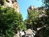 Remontée du Carciara : arrivée au canyon